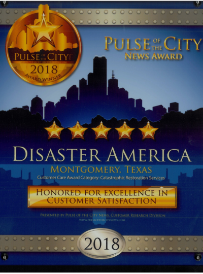 2018 pulse of the city award