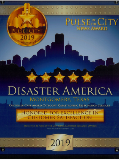 2019 pulse of the city award